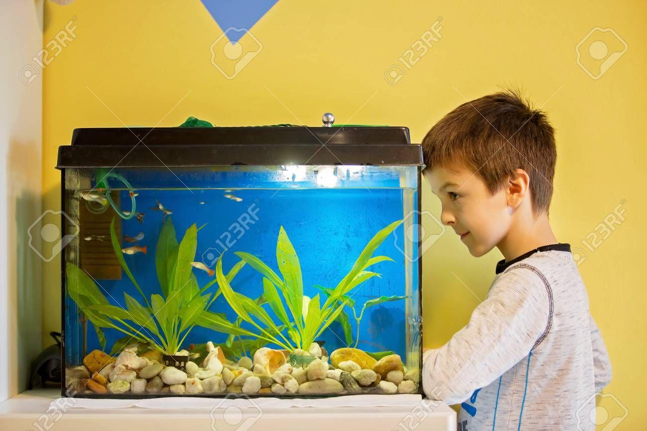 Pin On Aquarium Gallon