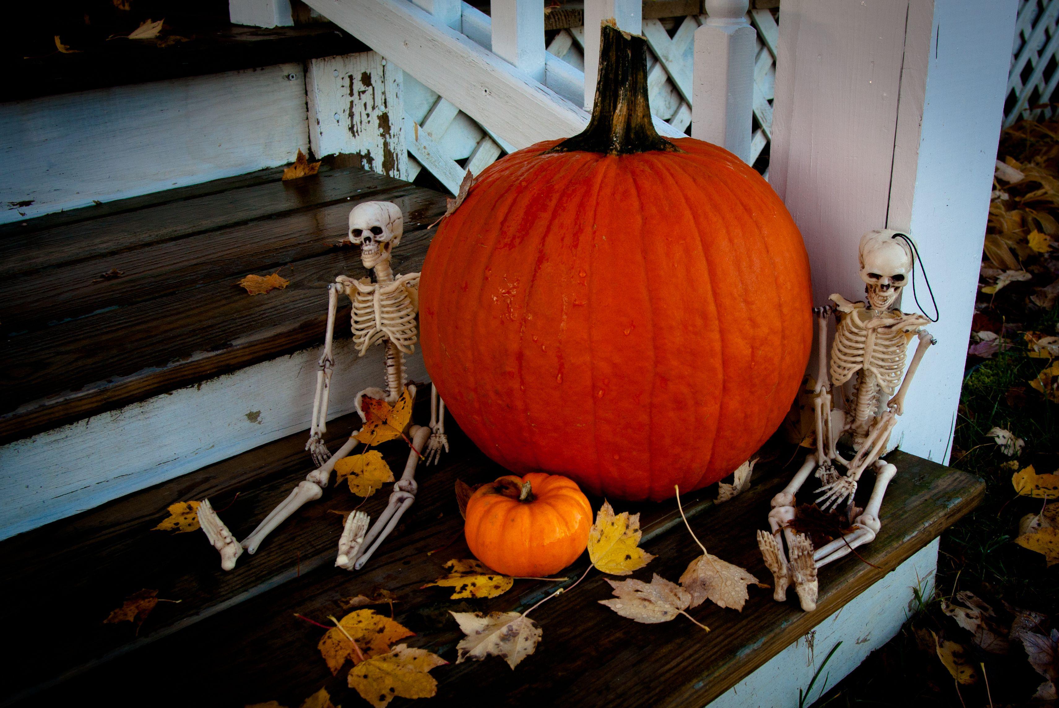halloween in michigan, 2011 | halloween | pinterest
