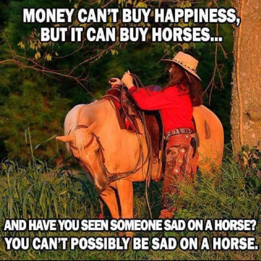 Horses Happiness So Money Happiness Equestrianmemer Equestrianmemes Explorepage Horsememes Horse Quotes Funny Inspirational Horse Quotes Horse Quotes