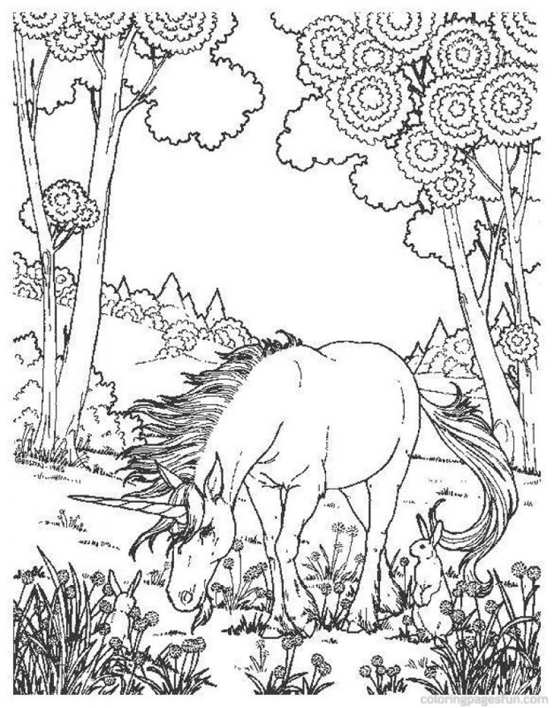 difficult and hard coloring page of realistic unicorn - Hard Animal Coloring Pages