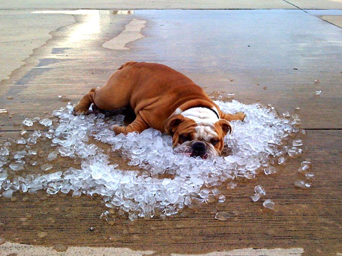 cute#summer#hot