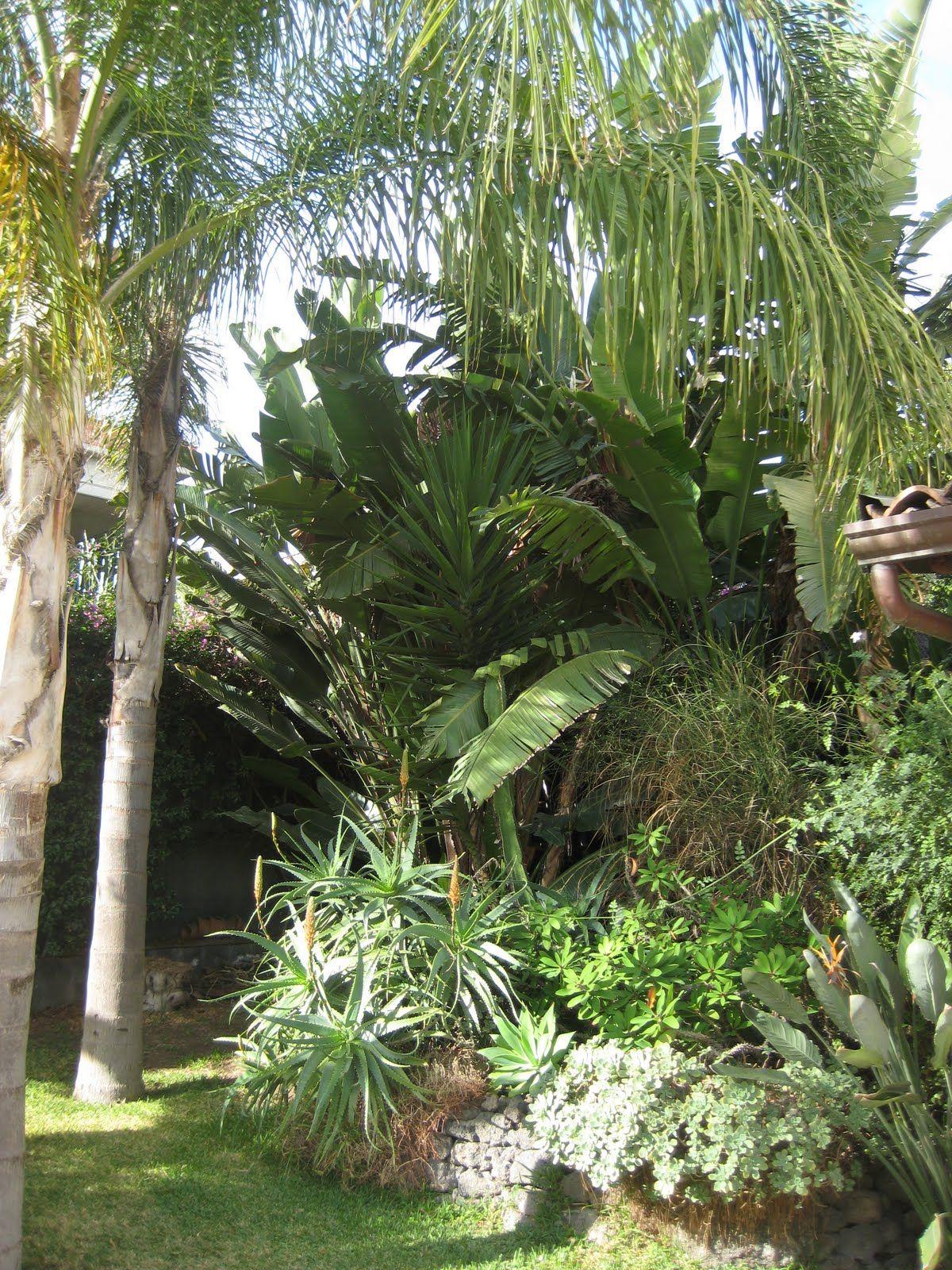 Succulente Giardino Siciliano   Piastrelle per esterni ...