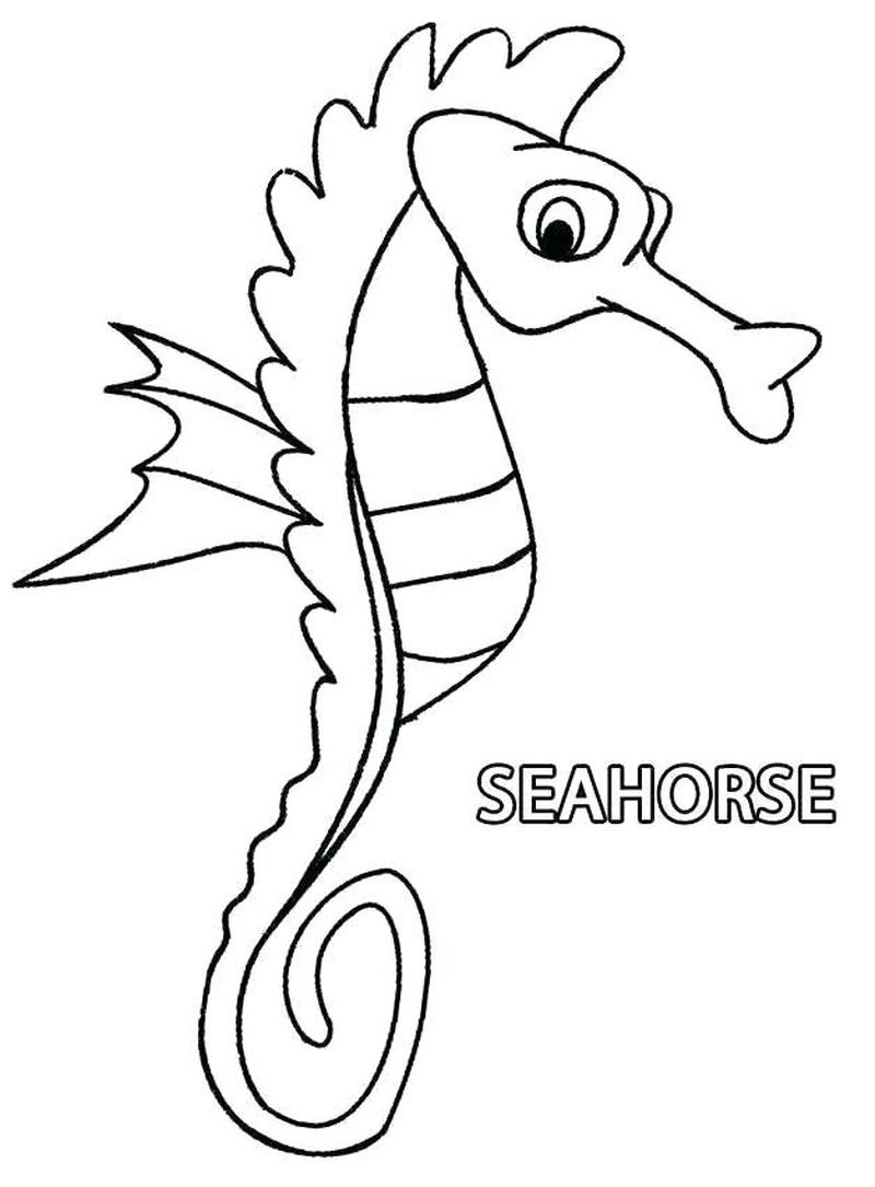 Seahorse Coloring Pages Free Horse Coloring Pages Animal Coloring Pages Horse Coloring