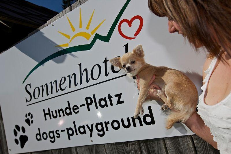"""""""Urlaub mit dem Hund""""- bei uns haben Hunde ihre eigene Spielwiese"""