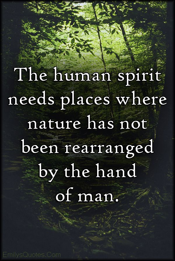 The Human Spirit Needs Places Where Nature Has Not Been Rearranged