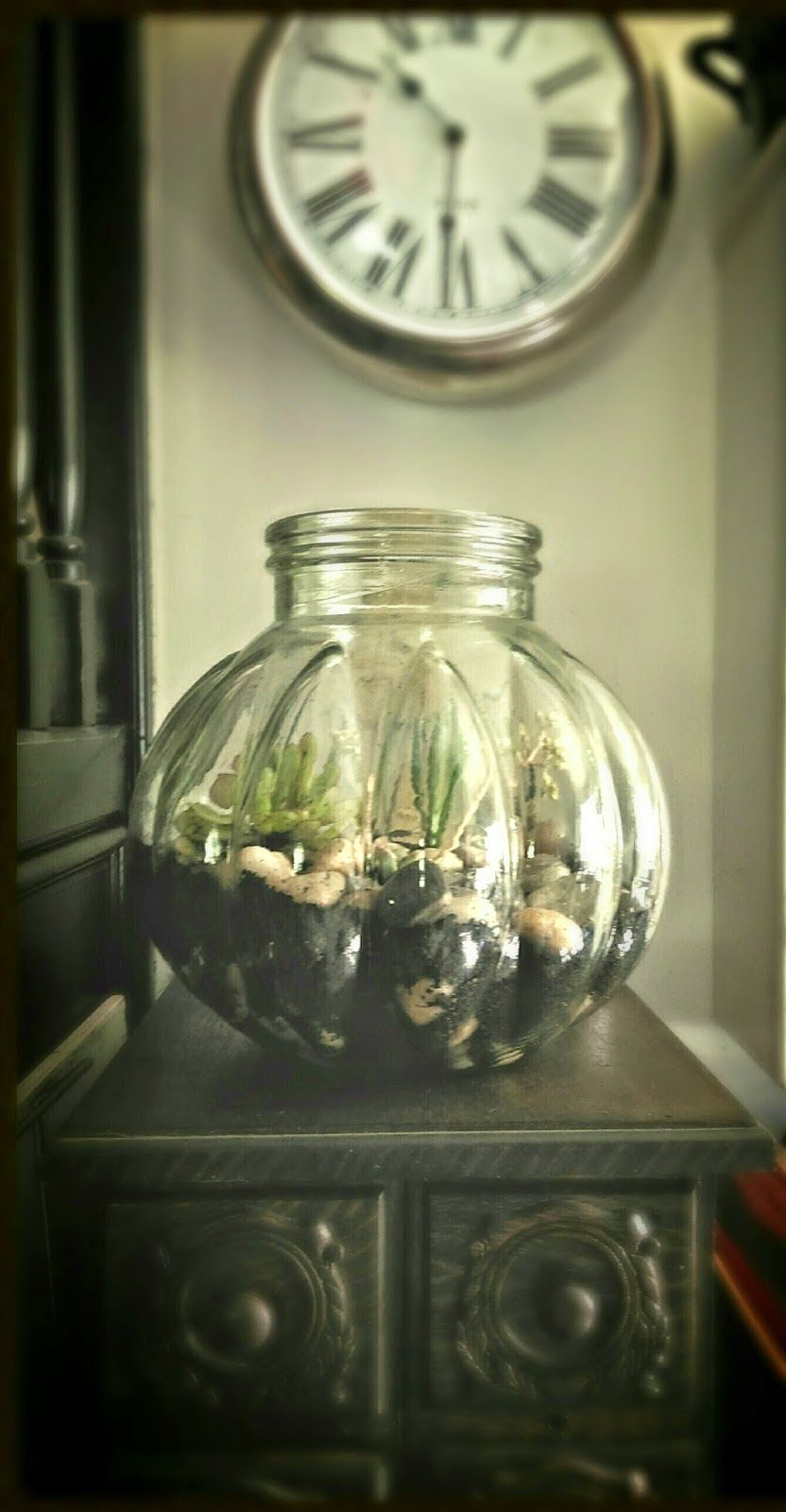 my first terrarium attempt http://theforestflaw.blogspot.com.au/