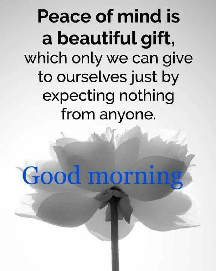 Peace Of Mind Is A Beautiful Gift Which Only We Can Give To Ourselves Just By Expecting Nothing F Good Morning Quotes Morning Quotes Good Morning Image Quotes