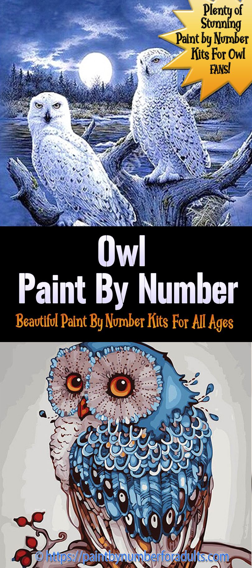 Paint By Number Kits of Owls Paint by number kits, Paint
