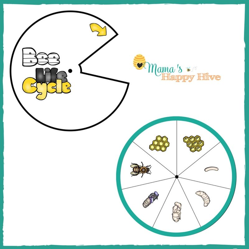 image regarding Printable Spinner named Obtain Your Cost-free Printable PDF Obtain the Honey Bee Lifestyle