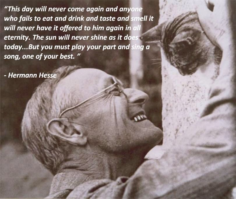 an analysis of the main character in siddhartha by hermann hesse Siddhartha is a novel by hermann hesse that deals with the spiritual journey of self-discovery of a man named siddhartha during the time of the gautama buddha the book, hesse's ninth novel, was written in german, in a simple, lyrical style.