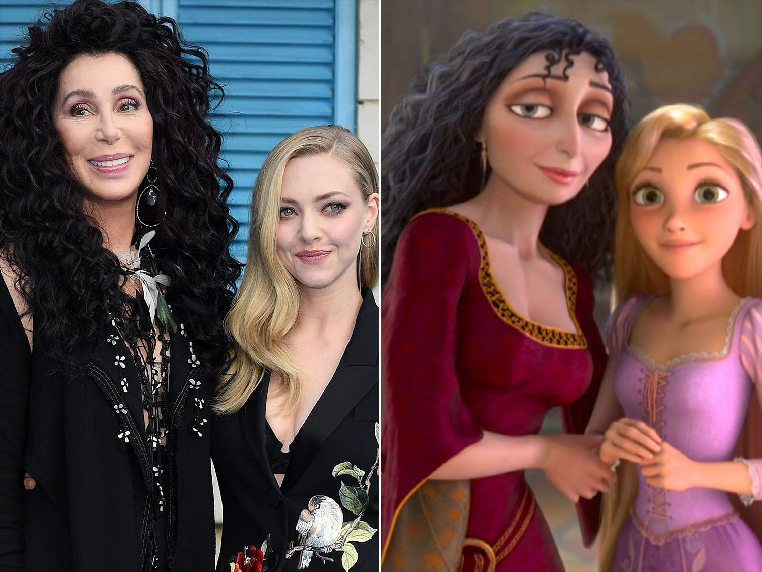 Twitter Calls For Cher And Amanda Seyfried To Star In A Live