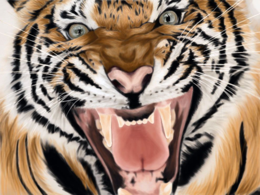 Roaring Tiger by on DeviantArt