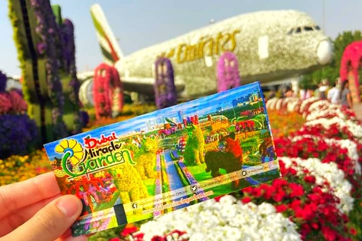 Affordable Ticket Price of Dubai Miracle Garden Miracle