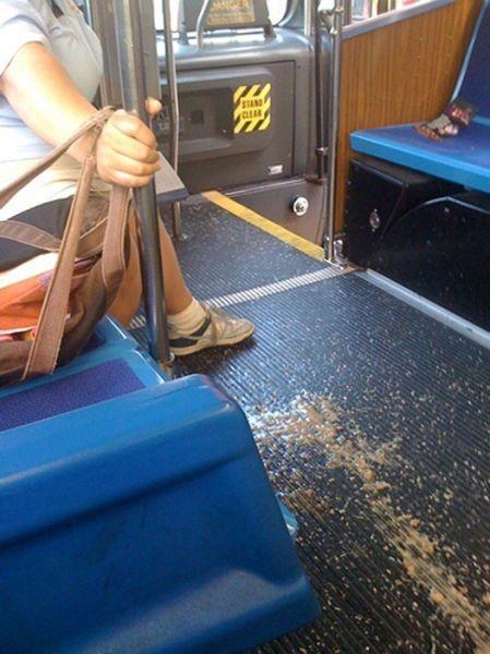 Bus sickness? | Public transport, Public, Sick