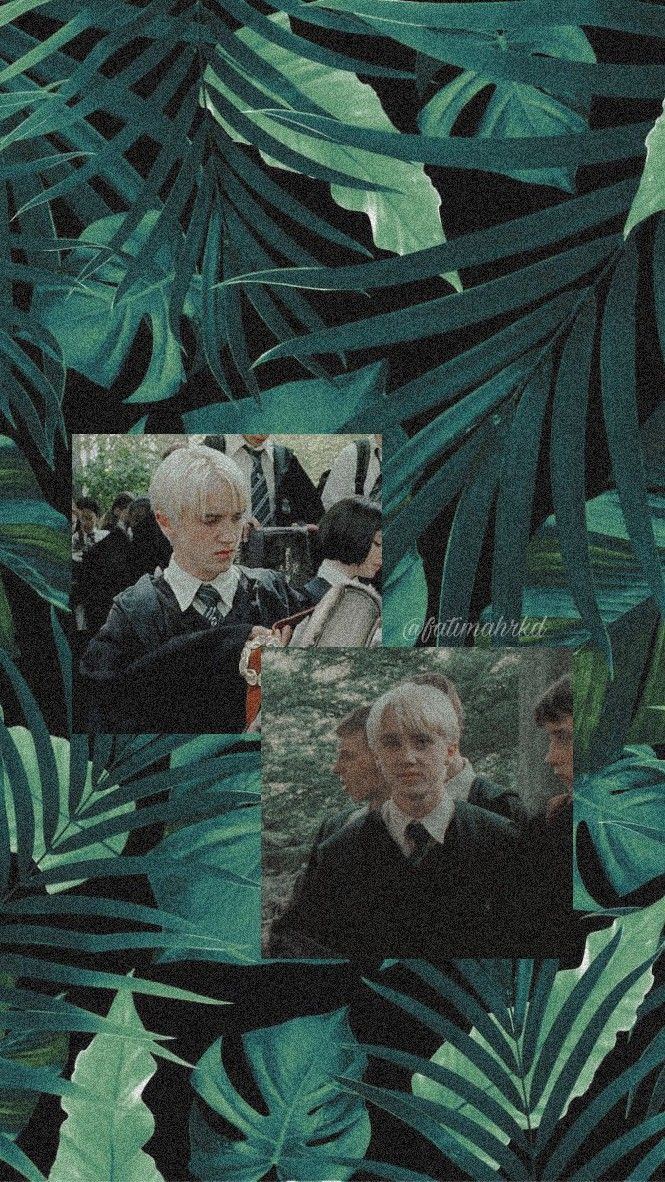Draco Malfoy Wallpaper Di 2020