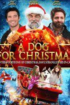 Image Of A Dog For Christmas Christmas Movies Xmas Movies Best Christmas Movies