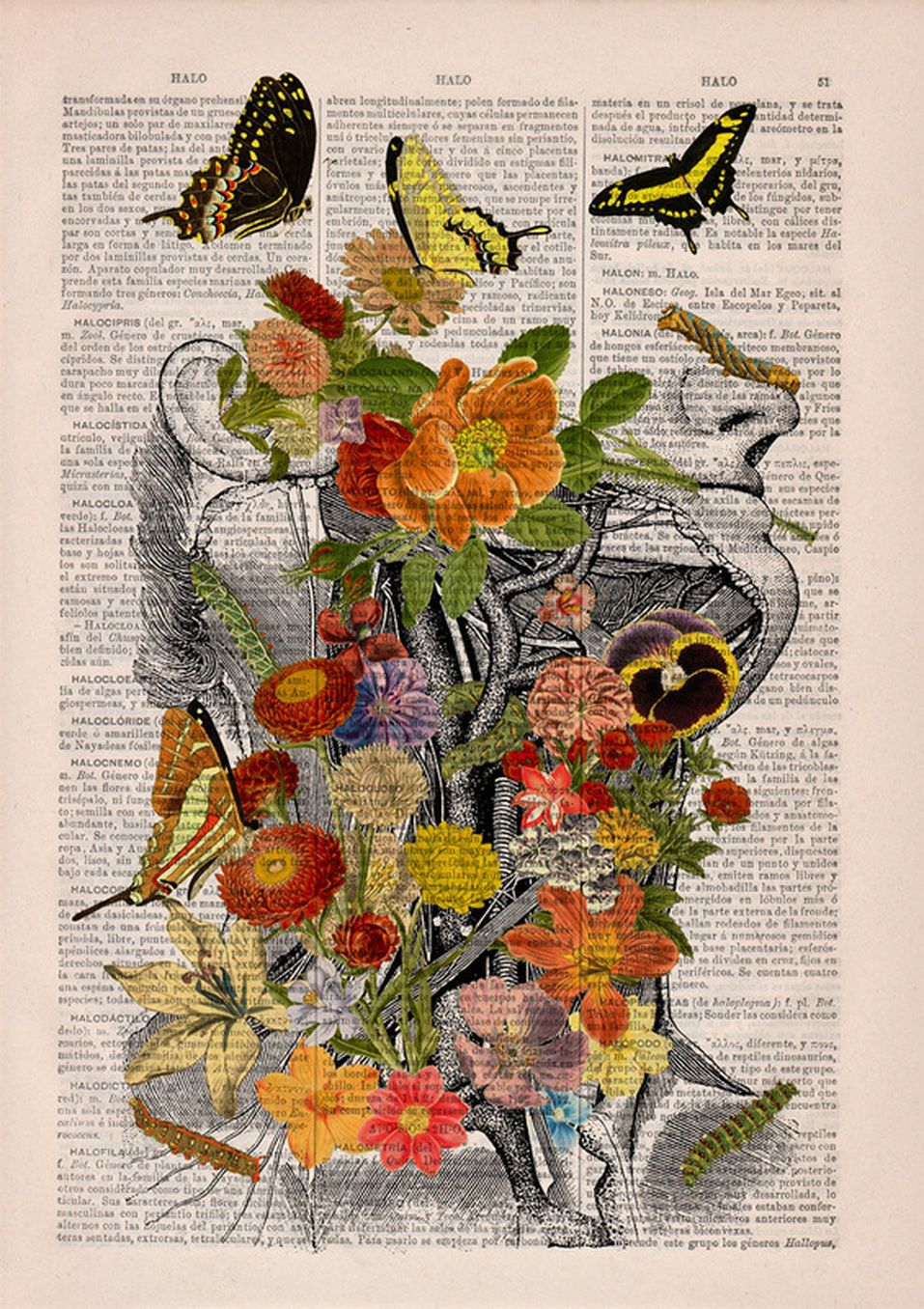 Imagem   quadro quarto   Pinterest   Humano, Anatomía humana y Tela