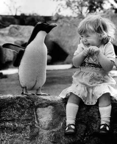 """Penguin and a little girl, reminds me of payton, she always say """" I dont likie that guy"""" whenever she sees a penguin lol"""