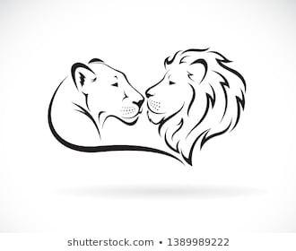 Männlicher Löwe und weiblicher Löwe auf Stock-Vektorgrafik (Lizenzfrei) 1317212675