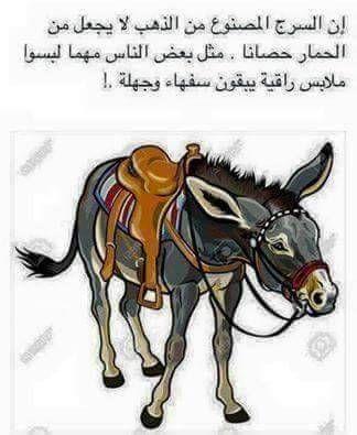 ھ ہ ﻟۆسـاﭠ ﻋﭴۆژ Funny Arabic Quotes Iphone Wallpaper Quotes Love Wisdom Quotes Life