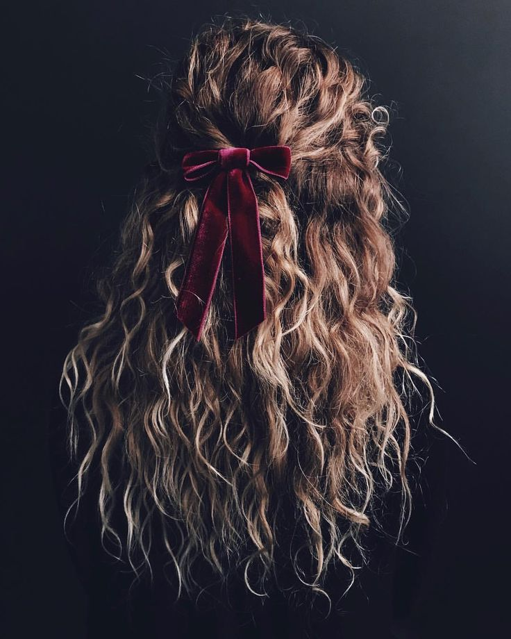 "KRISTIN ESS (AND LOTS OF DOGS) on Instagram: ""BOWS BEFORE BROS. ��‍️ (curl products used are tagged in the photo ��, velvet magnificence from @jenniferbehr )"""