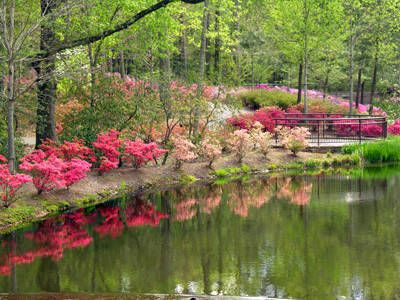 17 Best 1000 images about Callaway Gardens Ga on Pinterest Gardens
