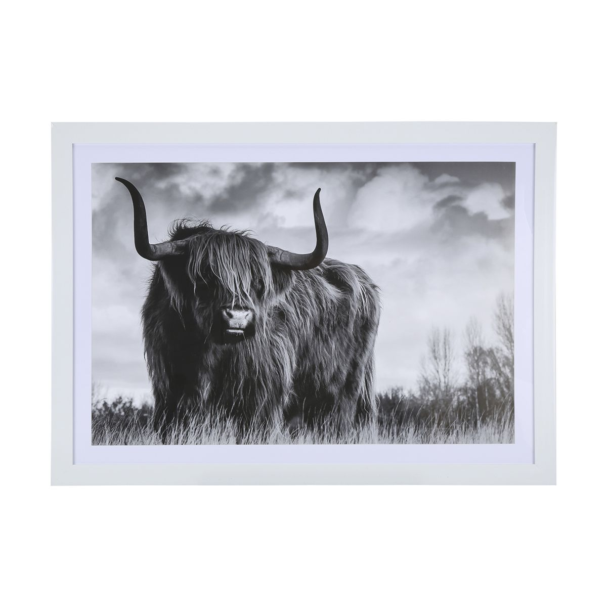 Kmart Canvas Printing Highland Cow Framed Print Kmart Living Room Cow Highland