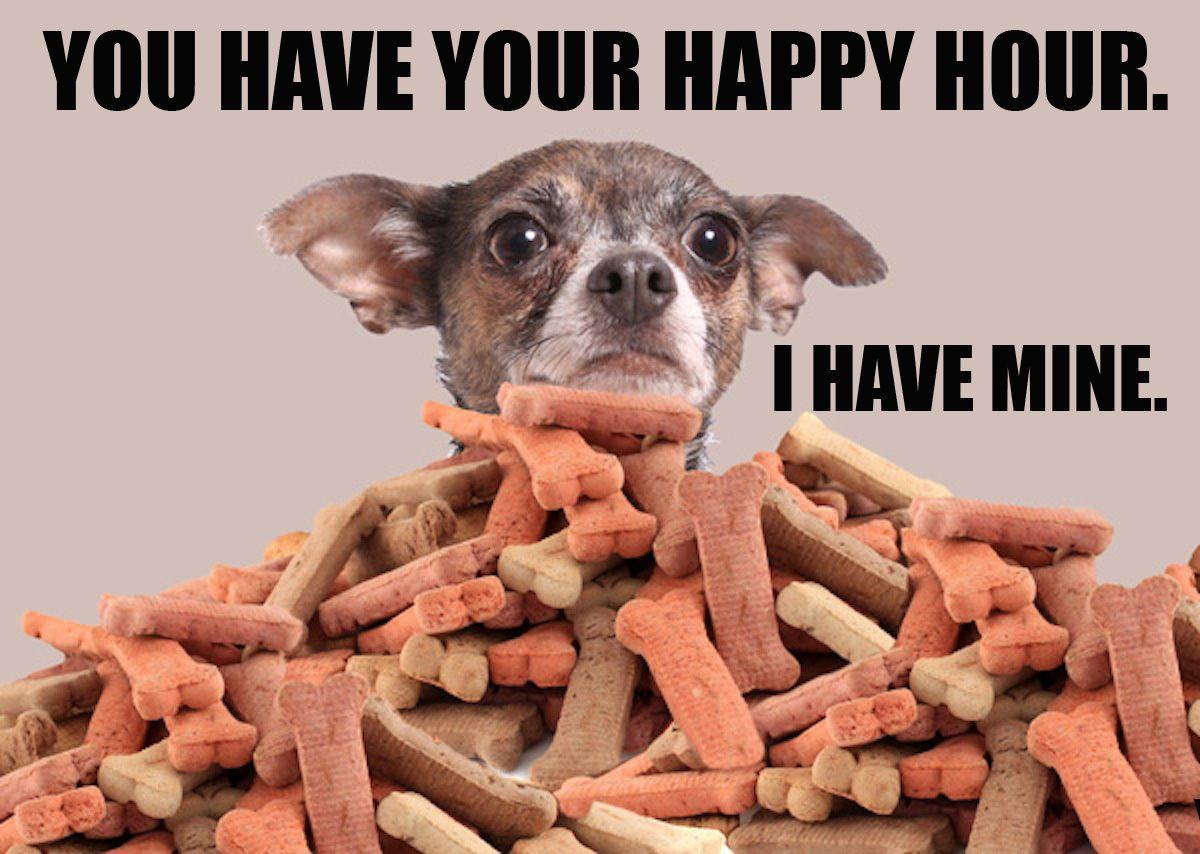 Happy Hour Easy dog treats, Dog food recipes, Homemade