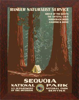 Sequoia National Park Framed Poster Vintage National Park Posters National Park Posters Wpa Posters
