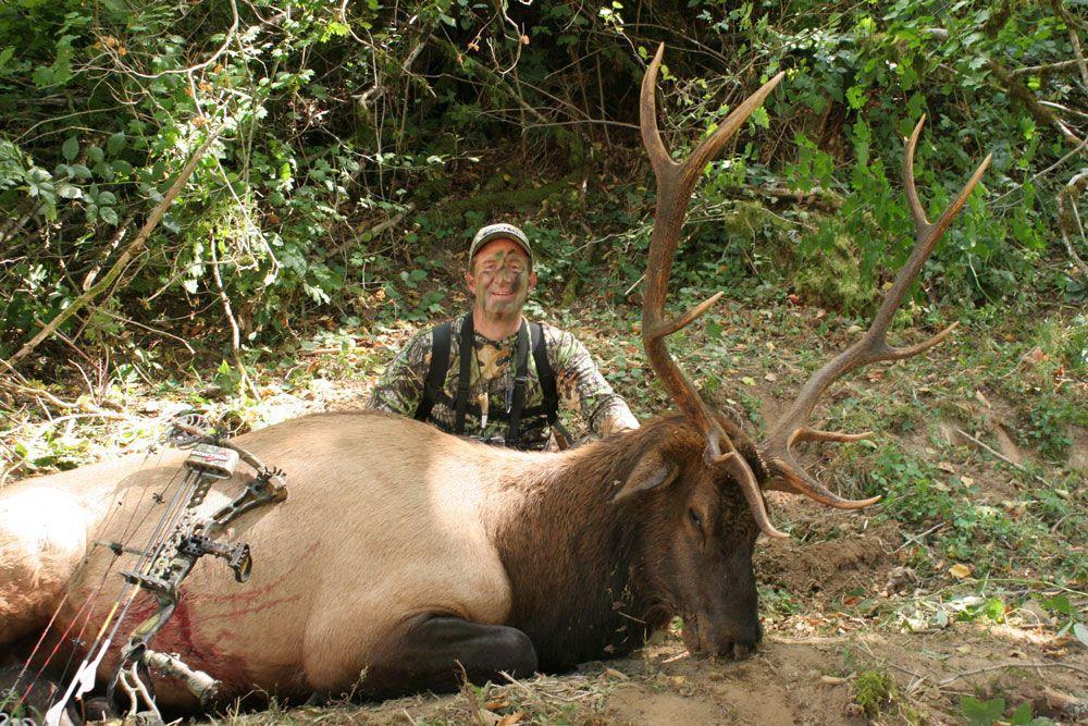 31 D I Y Tips For The Ultimate Elk Hunt With Images Elk Hunting Deer Hunting Tips Hunting Tips