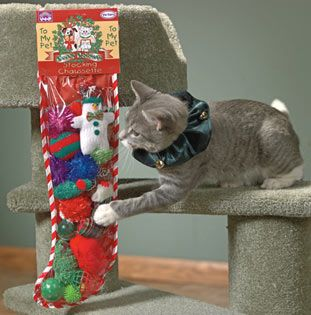 Stocking for the Cats