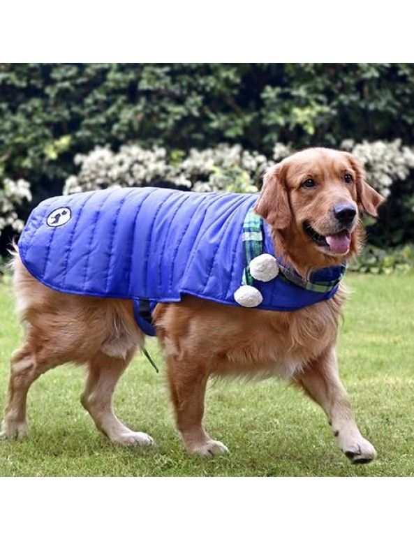 Huft Madison Jacket For Dogs Blue