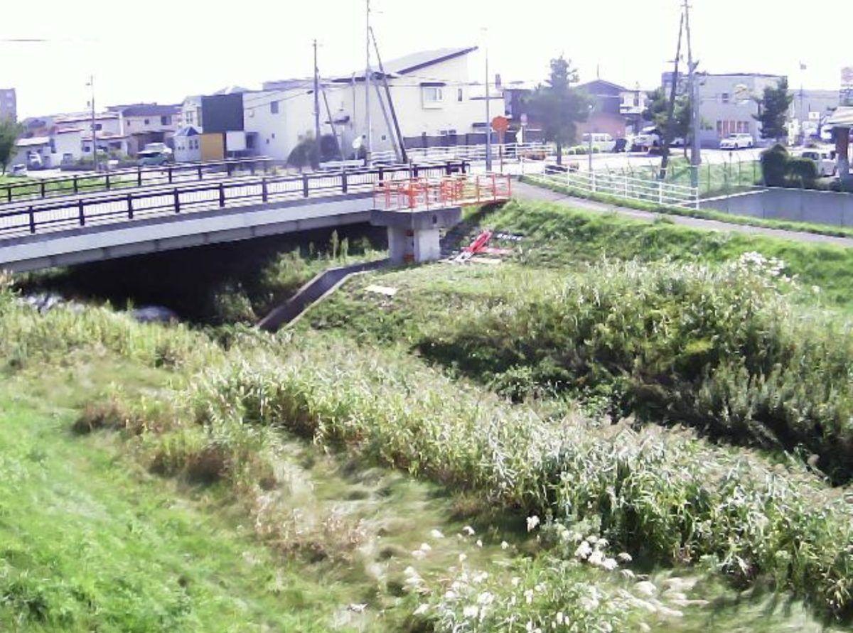 道路 カメラ 北海道 ライブ