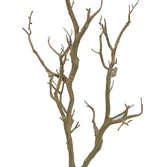 Bare Birch Branch by Ashland® | Michaels