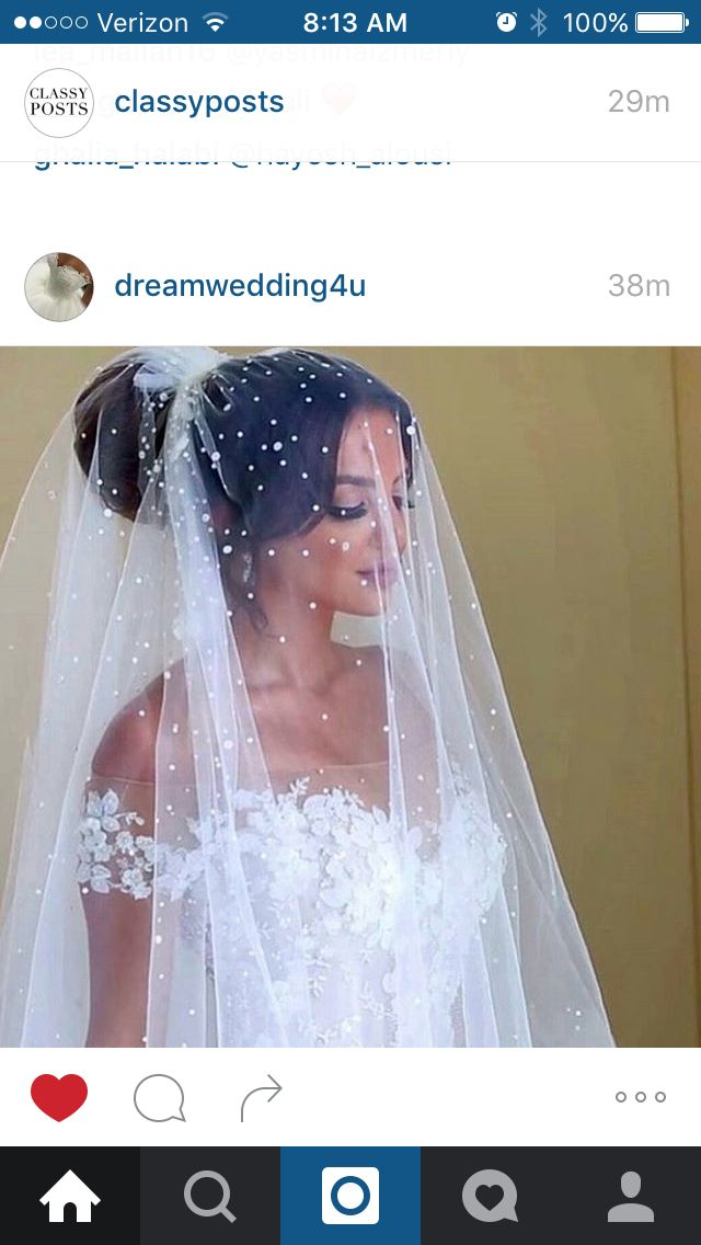Love the veil and makeup