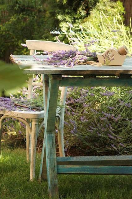 In My Garden ( Blue Hortensia)