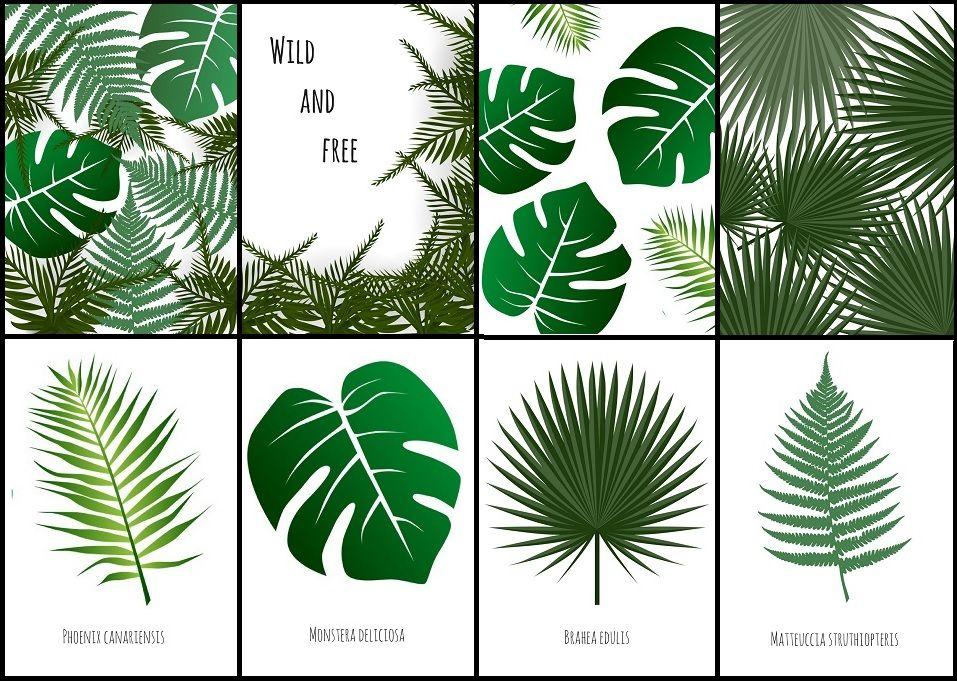 Modny Motyw Botaniczny We Wnętrzach Plakaty Botaniczne Do