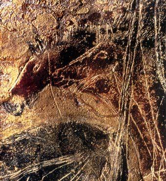 lascaux : petits chevaux sous la vache noire de la nef