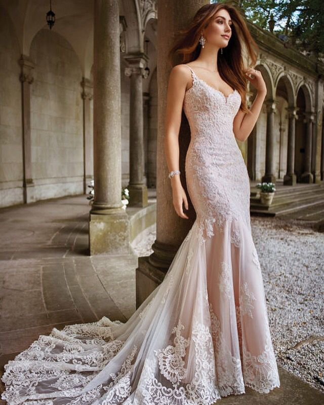 Wedding dresses in Auburn