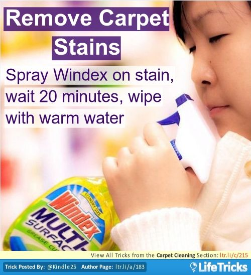 Remove Carpet Stains Lifetricks Stain Remover Carpet Carpet Stains Homemade Carpet Stain Remover