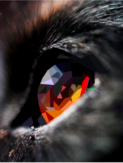 Wolf Eye Geometric Art Pinterest Com Emilylan752 Geometric Art Art Vector Art