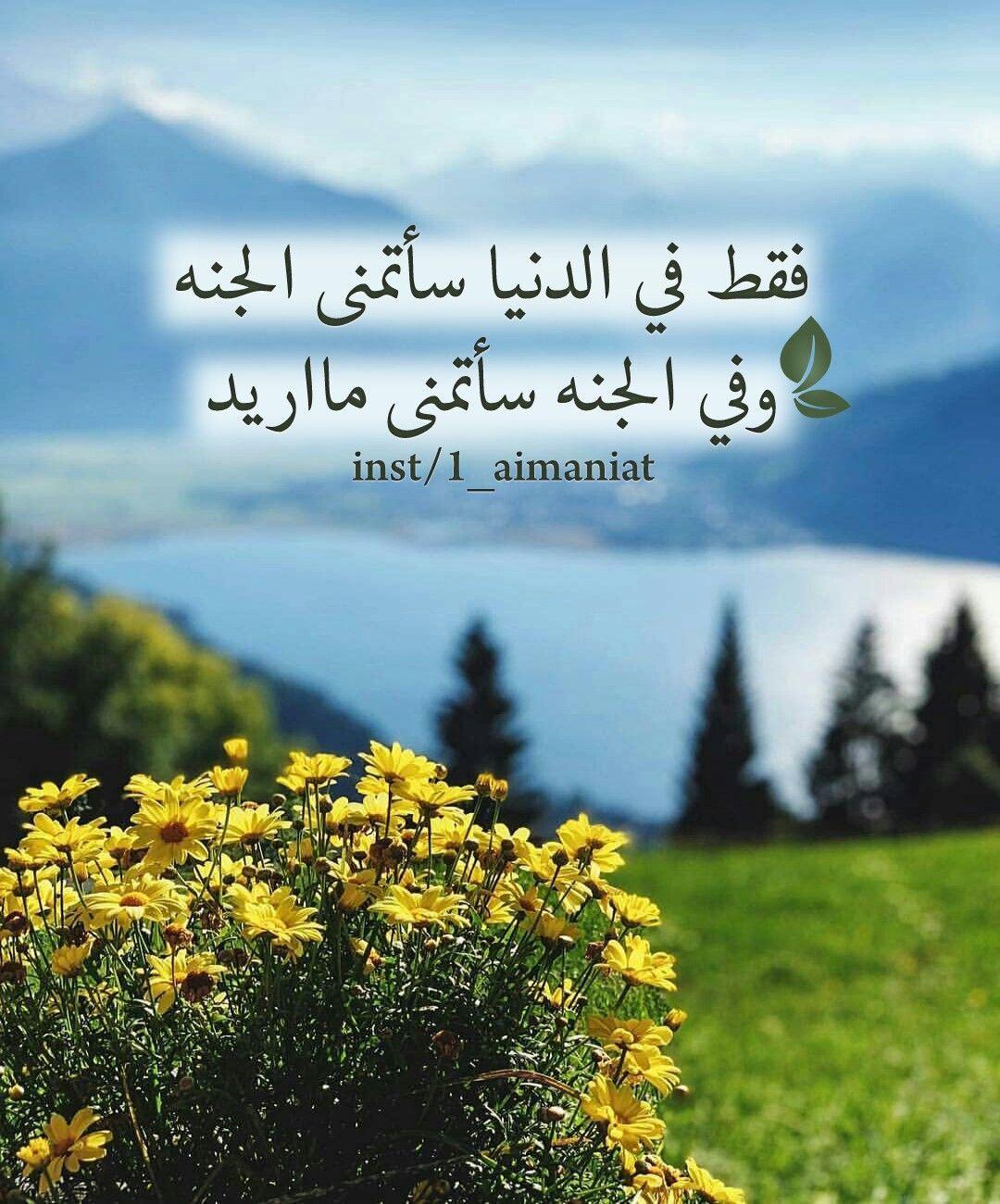 فقط في الدنيا سأتمنى الجنه وفي الجنه سأتمنى مااريد Islamic Quotes Islamic Pictures Islam Quran