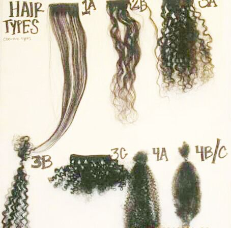 Hair type chart I\u0027d say I\u0027m between a 3c and 4a What\u0027s yours