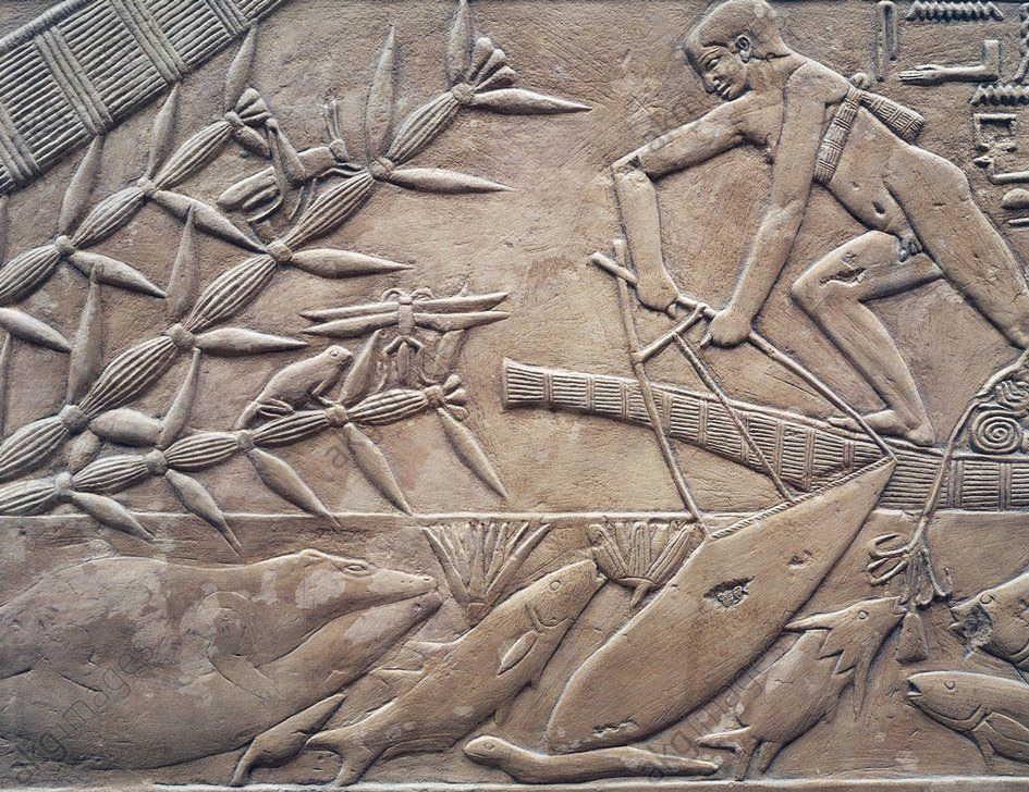fishing scene bas relief kagemni mastaba saqqara. Black Bedroom Furniture Sets. Home Design Ideas