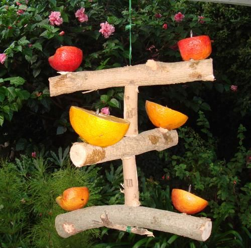 Fruit bird feeder