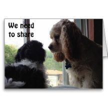FOR OUR SHARED BIRTHDAY-PUPS IN A WINDOW CARDS