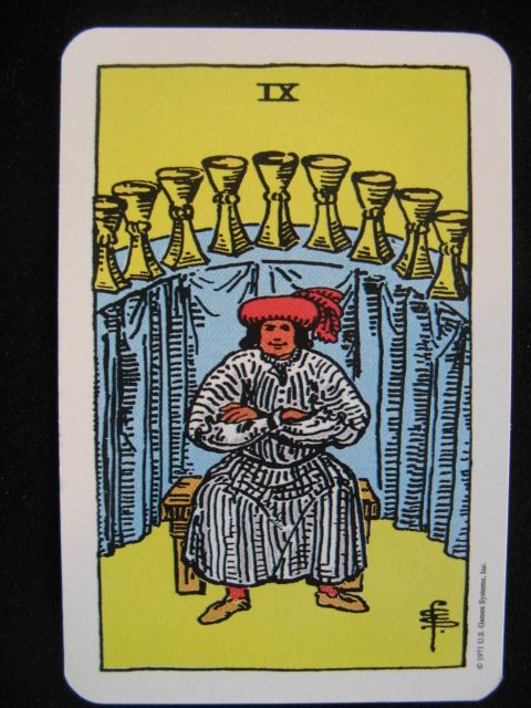 """""""The nine of cups""""  - The gypsy wish card.  Your wish will come true."""