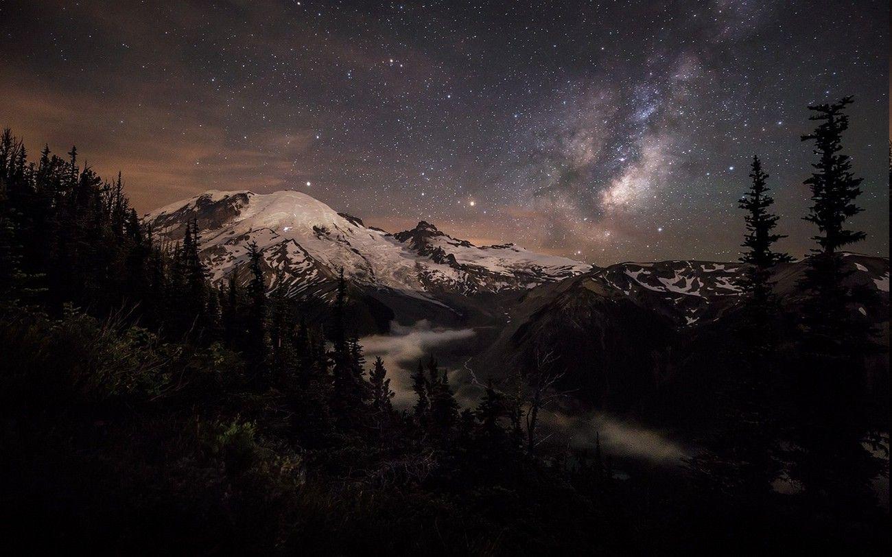 nature, Landscape, Moonlight, Mountain, Forest, Mount Rainier ...