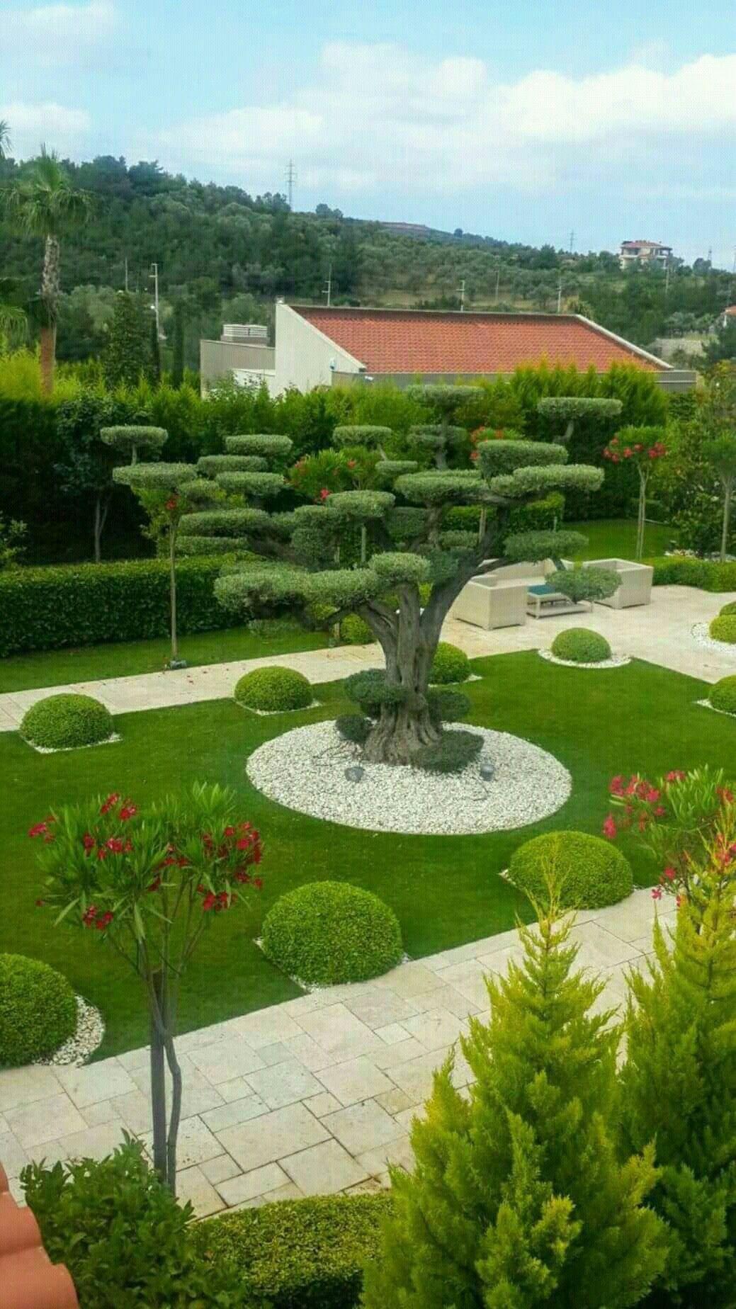 28 Super Idees De Jardin Revelees Par Un Paysagiste Beaux