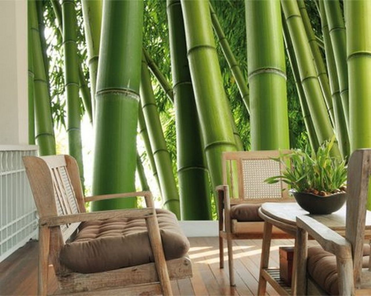 Home interior small living room decor with stunning green for Bamboo mural wallpaper